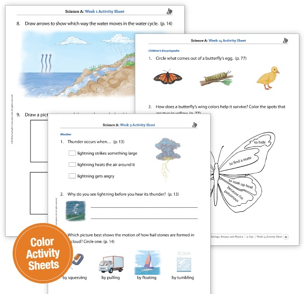 Science Activity Sheets in Full Color